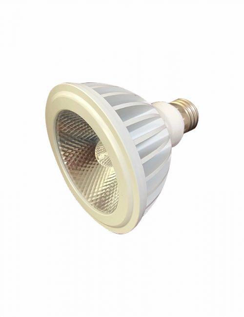 LED Parlight COB 16 20 Watts 16W 20W PAR38 Warm White Ecoshift Corporation Philippines