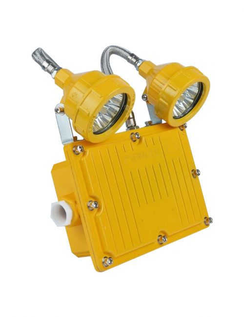 Explosion Proof LED Industrial Emergency Light 2x10W Philippines
